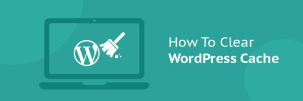 ¿Cómo limpiar todo el caché en WordPress?